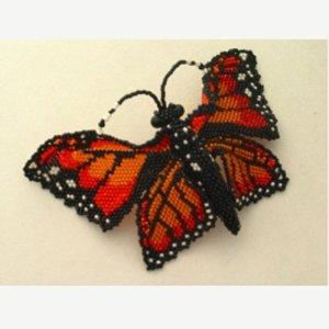 画像1: 【50%OFF】Monarch Butterfly